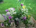 Июль... с элементами счастья | Блог Анны Черных