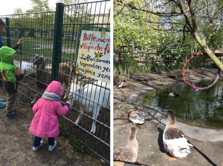 Детский Берлин: инстории, адреса и ссылки | Может быть по-другому