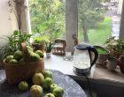Просто среда —эксперимент с гостями | Блог Анны Черных
